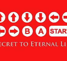 Secret to Eternal Life by choustore
