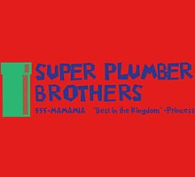 Super Plumber Brothers by choustore