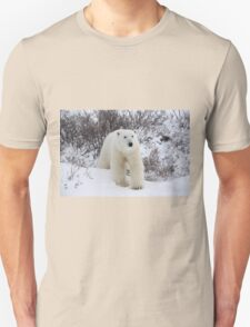 Polar Bear Coming out of the Arctic Willow Unisex T-Shirt
