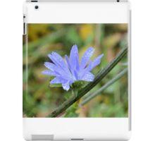 Last Chickory Bloom iPad Case/Skin