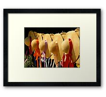 Waiting For Spring And Summer Framed Print