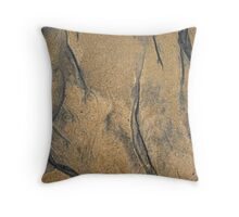 Sands of Time II Throw Pillow