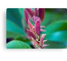 vibrant plant Canvas Print