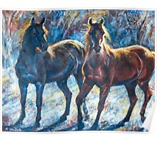 Curious Horses Poster