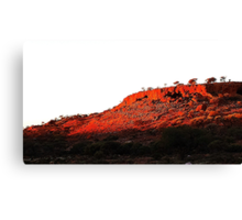 Red in the West Canvas Print