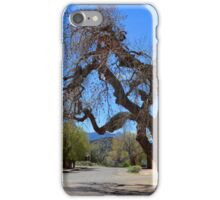 Hanging Tree, Cerrillos, New Mexico iPhone Case/Skin
