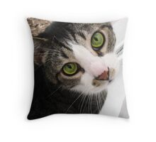 King Leonidas of Sparta...ruling the lizards outside Throw Pillow