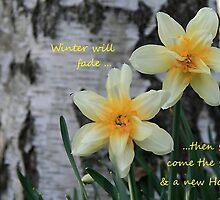 Spring Daffodils by Geno Rugh