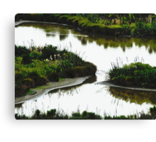 Too muddy for man Canvas Print