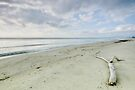 A peaceful morning at Casabianda beach - Corsica by Patrick Morand