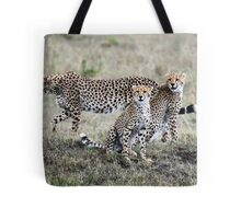 CHEETAH FAMILY - MAASAI MARA Tote Bag