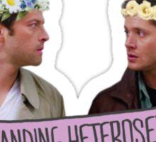 Outstanding Heterosexuals Sticker