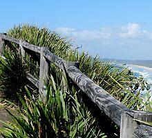 Walking Track Fence Byron Bay N.S.W  Australia by sandysartstudio