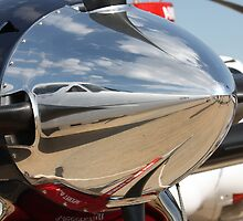 reflections of flight by Steve Scully