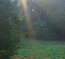 """ Morning Has Broken "" by Ginny York"