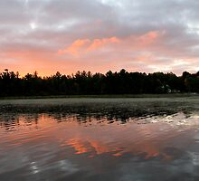 Morning Light Kisses The Northwoods by Gina Ruttle  (Whalegeek)