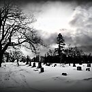 Crystal Lake Cemetery  by Rebecca Bryson
