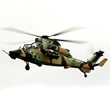 Eurotiger  Helicopter by aircraft-photos