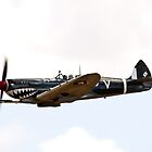 Supermarine  Spitfire by aircraft-photos
