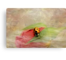Wispy and whimsical Canvas Print