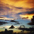 Night Sky by Jenny Dean
