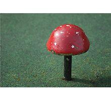 Not Mushroom Photographic Print