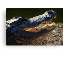 Toothy Grin Canvas Print
