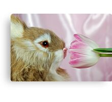 Hoppy Spring Canvas Print