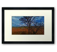 Dry Outback Framed Print