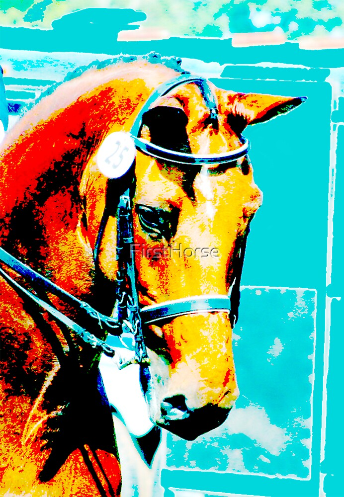 Double Bridle by FirstHorse