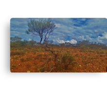 Dry Outback 2 Canvas Print