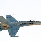 FA-18 HORNET  by aircraft-photos