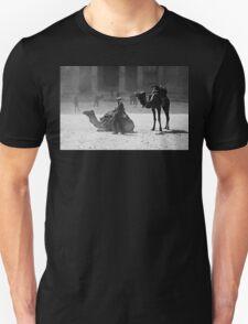 Dusty Wind Unisex T-Shirt