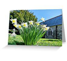 Daffodils At St Feock Church - Cornwall Greeting Card