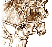 Team of Mares by FirstHorse