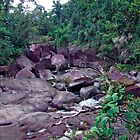 The Boulders - Innisfail, Far North Queensland by thebeachdweller