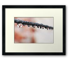 Dropline two Framed Print