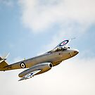 Gloster  METEOR by aircraft-photos