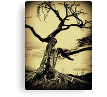 Call to the Earth Canvas Print
