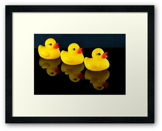 All your ducks in a row by Michael Fotheringham Portraits