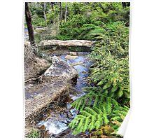 Creek at Araluen Poster