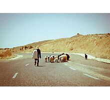 The Shepherd Photographic Print