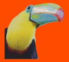 Toucan Time Kids Clothes