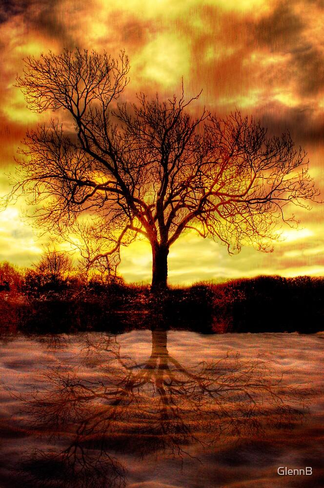 Druid Tree by GlennB