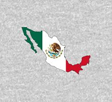 Mexico Mexican Flag Unisex T-Shirt