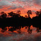 Mary River Sunset by hdimages