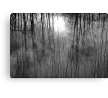 line 1  Canvas Print