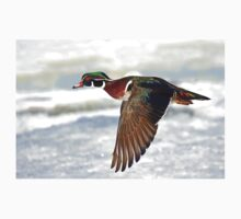 Colourful flight - Wood Duck Kids Clothes