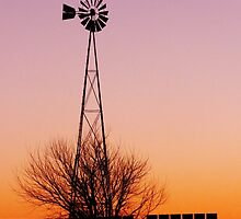 Windmill at Sunset by lorilee