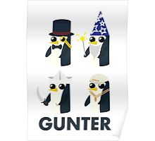 gunter evolution Poster